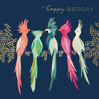 Sara Miller Birthday Colourful Birds