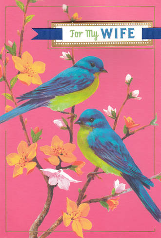 Anniversary Card Wife Hallmark Blue Birds
