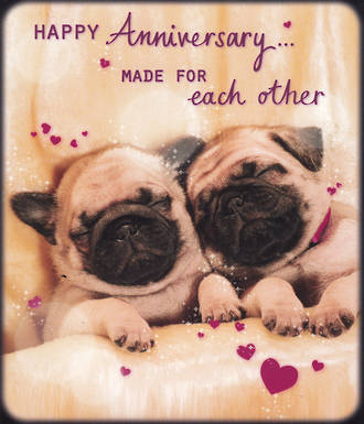 Anniversary Card Happy Days General Pugs