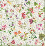 Lunch Napkins Caspari English Country Garden