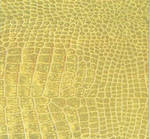 Sheet Wrap Crocodile Gold Foil