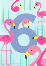 Birthday Age Card 6 Girl Tiger Tail Flamingo