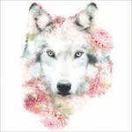 Wildlife Botanicals Wolf
