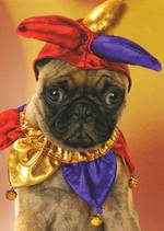 Miss You Card Pug Jester