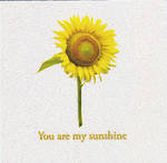 Mini Card You Are My Sunshine