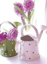 Beautiful Blossoms Birthday Watering Can