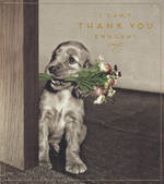 Thank You Card Love Unlimited Pup
