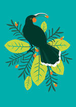 Birds Of A Feather Huia