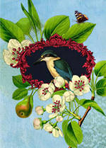 Mini Card Botany Kingfisher