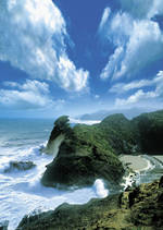 Pure NZ Ted Scott Wild Coast
