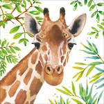 Lunch Napkins Paper Products Tropical Giraffe