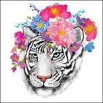 Lunch Napkins Paper Products Flora Tiger