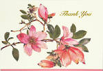Thank You Note Cards Magnolia