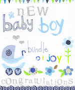 Baby Card Boy Joy New