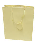 Large Gift Bag Solid Colour Cream