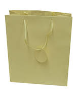 Medium Gift Bag Solid Colour Cream
