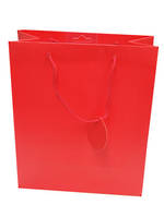 Medium Gift Bag Solid Colour Red