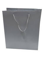 Medium Gift Bag Solid Colour Silver