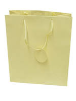 Small Gift Bag Solid Colour Cream