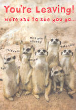 Jumbo Card Leaving Meerkats