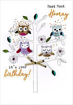 Irresistible Birthday Owls