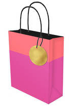 Large Gift Bag Lollypop Pink Orange