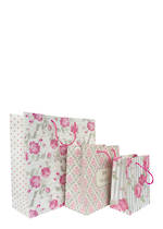 Tri-Coastal Paper Antiquity Set of 3 Paper Gift Bags