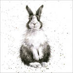 Wrendale Country Set Black White Bunny