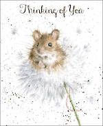 Sympathy Card Thinking of You Wrendale Fur Feathers