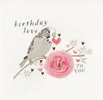 Quill: Birthday Love Budgie