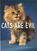 Dean Morris Fabulous: Cats Are Evil