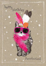 Fancy Pants: Birthday Purrrfection