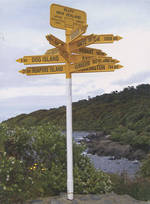 Pure NZ - Kiwiana: International Sign Post