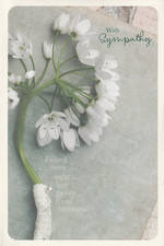 Sympathy Card: Passed From Sight