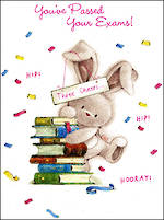Congratulations Card: Bebunni Passed Your Exams