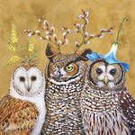 Napkins: Paper Products - Lunch Owl Family