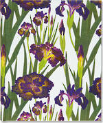 Large Journal: Purple Irises