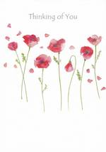 Sympathy Card: Thinking Of You Avocado Poppies